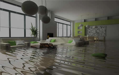 Water Damage Restoration in Beasley TX